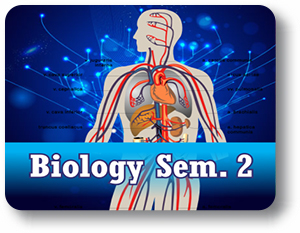 Biology - Semester - 2 (LAB)